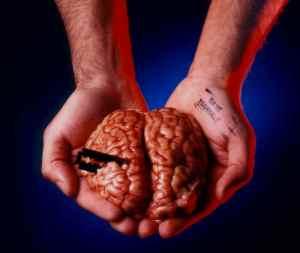 Neuroni e plasticità: la via per un apprendimento consapevole